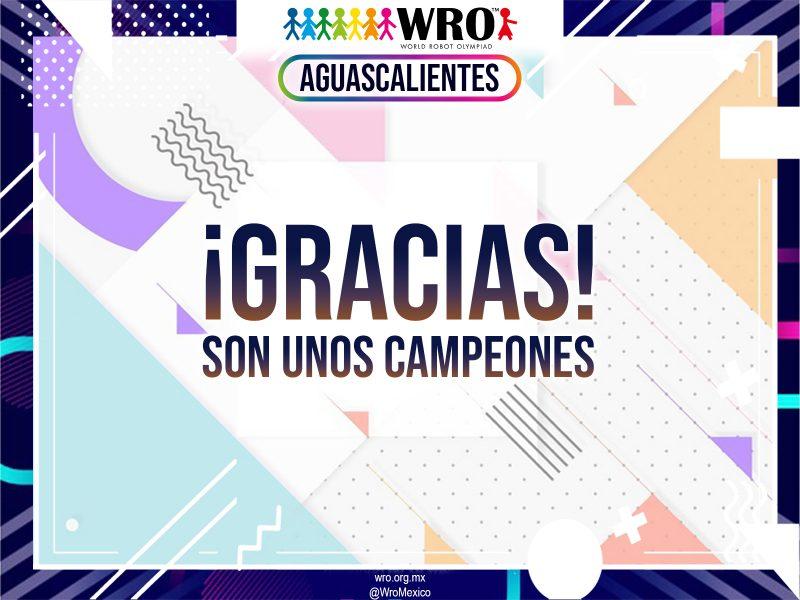 WRO 2019 Marco Sede Aguascalientes 78